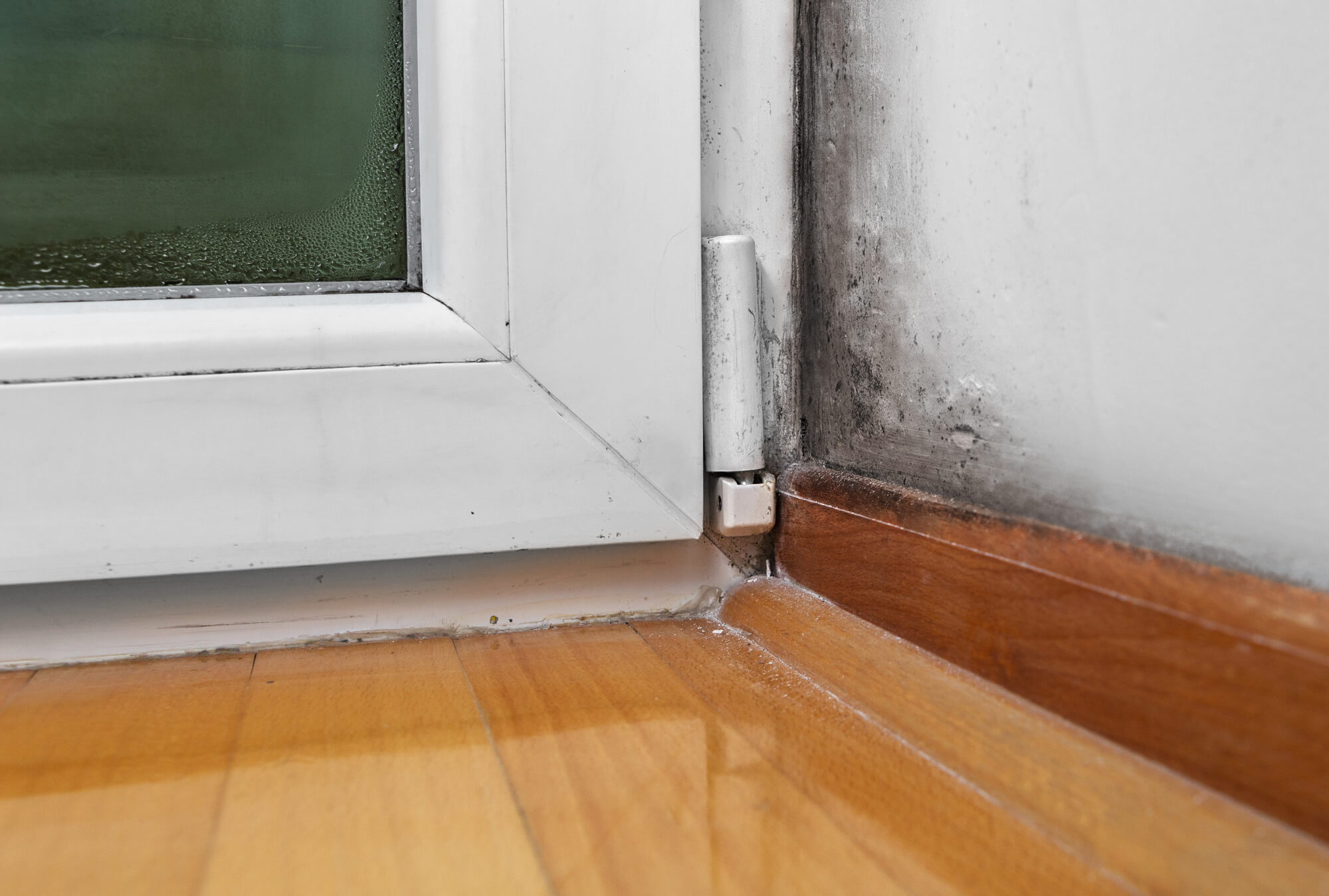 Water Damage to a House